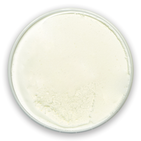 2-creme-glacee-vanille
