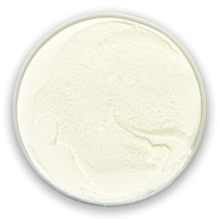 2-yogourt-glace-grec-nature
