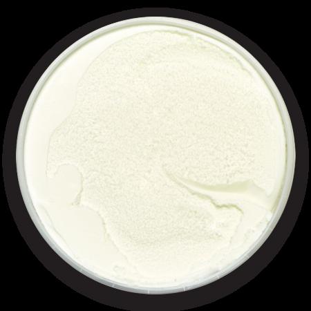 2-yogourt-glace-grec-vanille